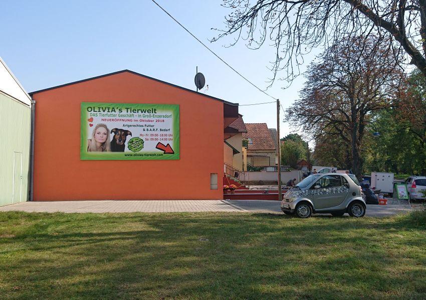 olivias tierwelt adresse